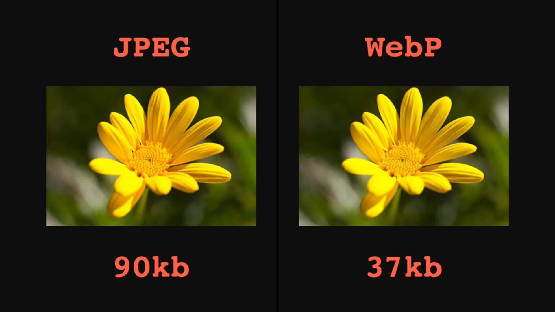 فرمت WebP