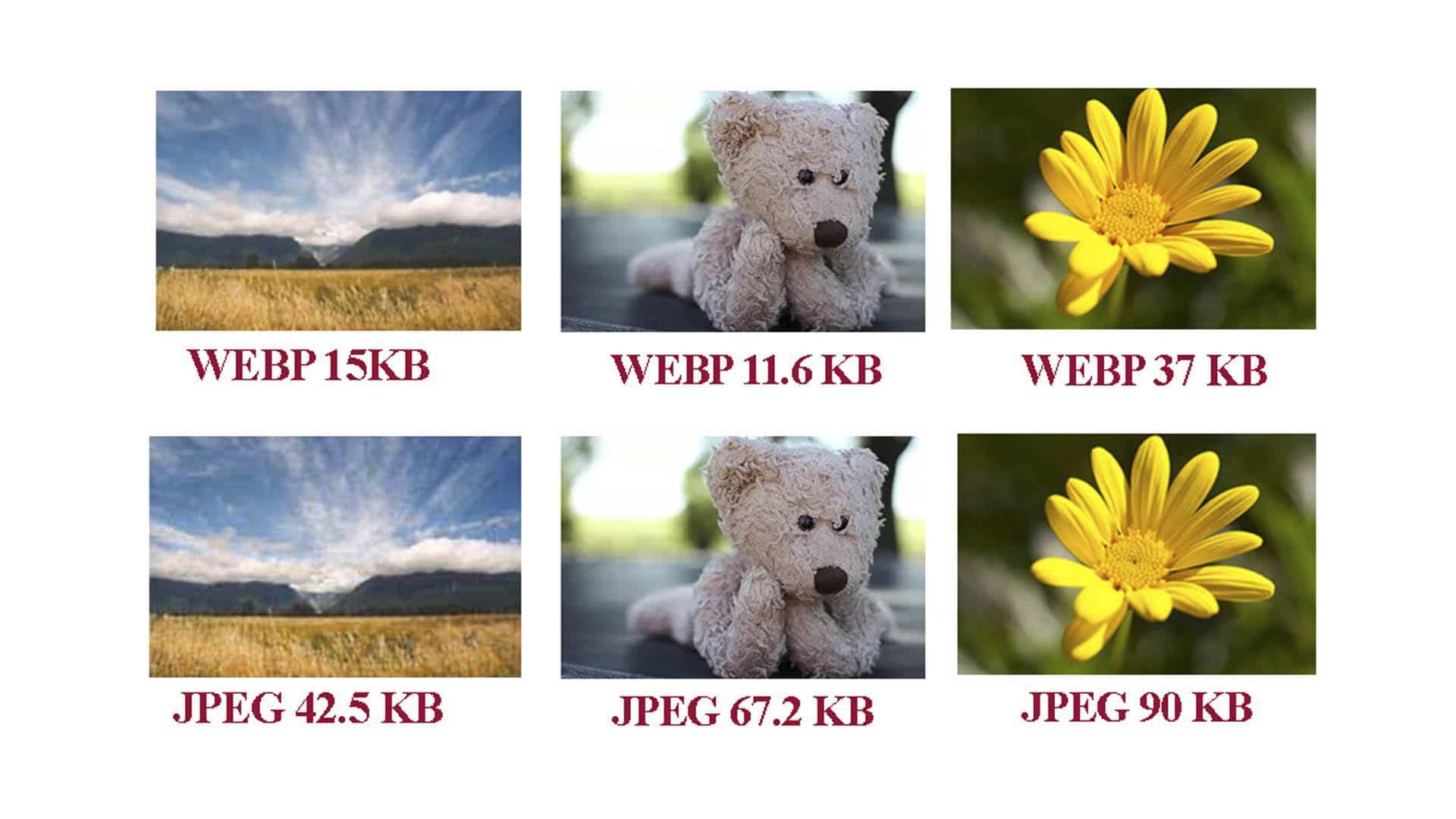 کیفیت تصاویر WebP